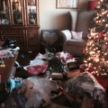 The Mess after Christmas